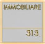 IMMOBILIARE 313 s.n.c.