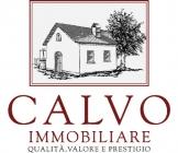 CALVO IMMOBILIARE SRL